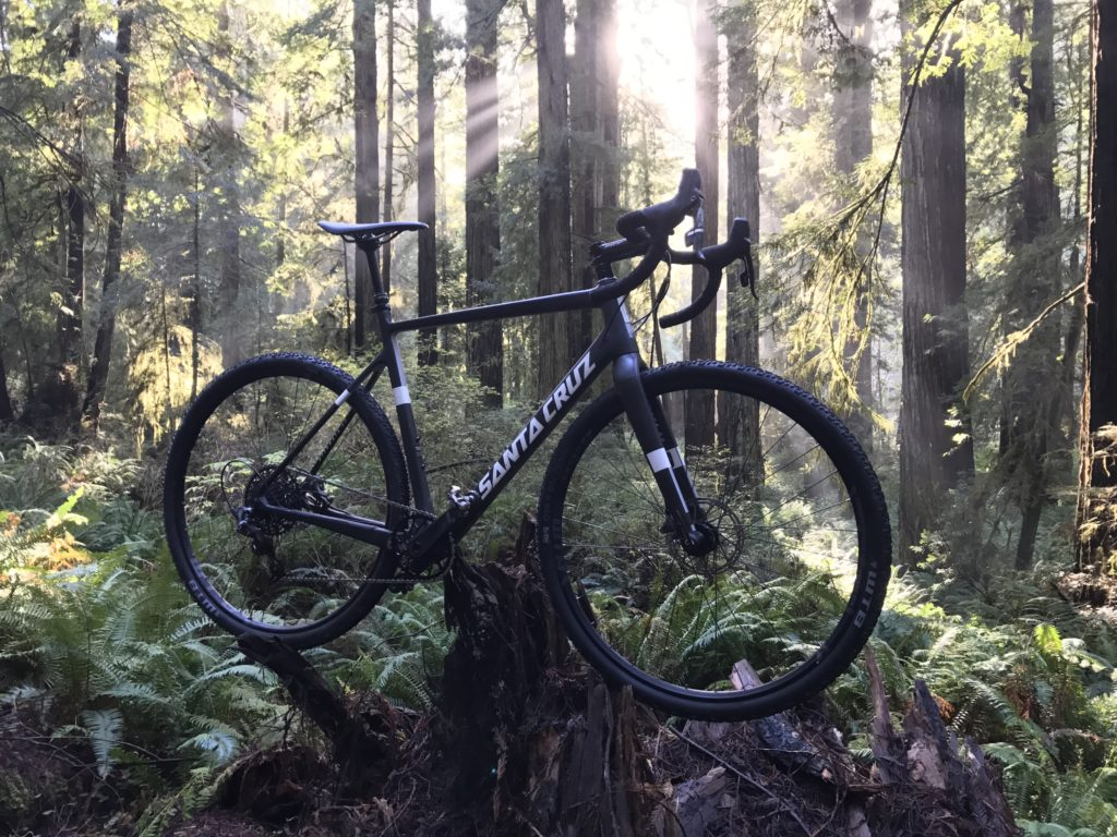 redwoods mountain biking